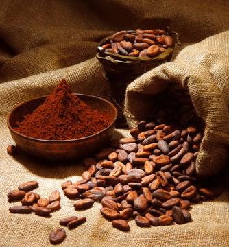 Kakao und Schokolade auf schoko-freun.de